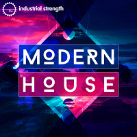 Modern House product image