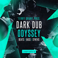 Terry Grant Presents - Dark Dub Odyssey product image