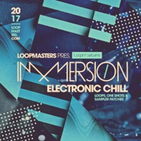 Immersion - Electronic Chill product image