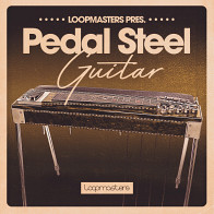 Pedal Steel Guitar product image