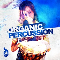 Organic Percussion product image