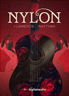 Nylon: Flamenco Rhythms product image