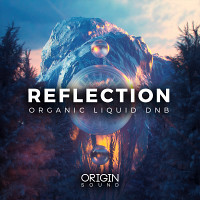 Reflection - Organic Liquid DNB product image