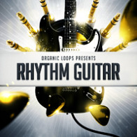 Rhythm Guitar product image