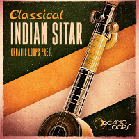 Classical Indian Sitar product image