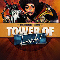 Tower Of Funk product image