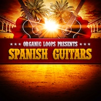 Spanish Guitar product image