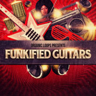 Funkified Guitars product image