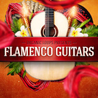 Flamenco Guitars product image
