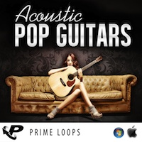 Acoustic Pop Guitars product image