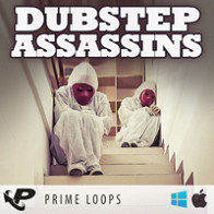 Dubstep Assassins product image