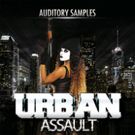 Urban Assault product image