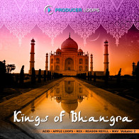 Kings of Bhangra Vol.2 product image