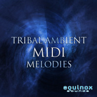 Tribal Ambient MIDI Melodies product image