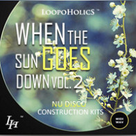 When The Sun Goes Down Vol.2: Nu Disco Kits product image