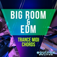 Big Room & EDM Trance MIDI Chords product image
