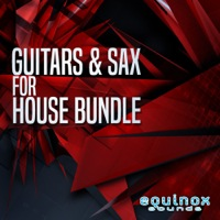 Guitars & Sax For House Bundle  product image