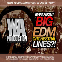 What About Big EDM Orchestral Lines product image