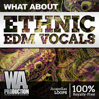 What About Ethnic EDM Vocals product image