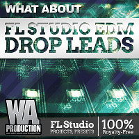 What About FL Studio EDM Drop Leads product image