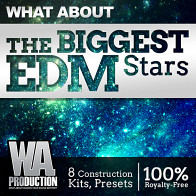 What About The Biggest EDM Stars product image