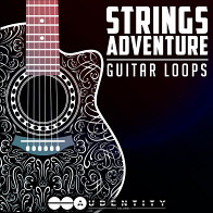 Strings Adventure product image