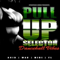 Pull Up Selector: Dancehall Vibes product image