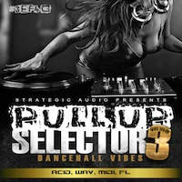 Pull Up Selector: Dancehall Vibes Vol.3 product image