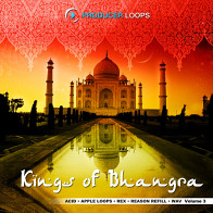 Kings Of Bhangra Vol.3 product image