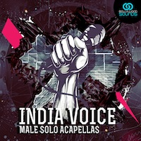 India Voice product image