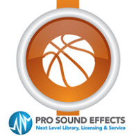 Sports Sound Effects - Ambience Ice Rink product image