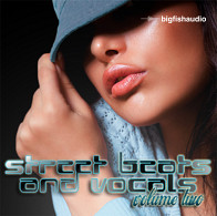 Street Beats & Vocals Vol.2 product image