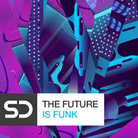 The Future Is Funk product image