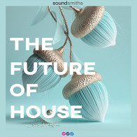 The Future of House product image