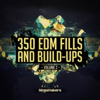 EDM Fills and Build-Ups Vol.2 product image