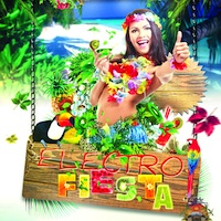 Electro Fiesta product image