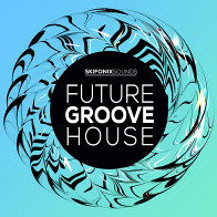 Future Groove House product image