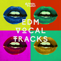 EDM Vocal Tracks product image