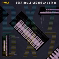 Deep House Chords & Stabs product image