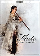 Ethnic Flute Phrases product image