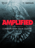 Amplified product image
