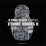 Ethnic Voices 2 product image