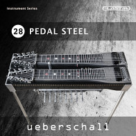 Pedal Steel product image