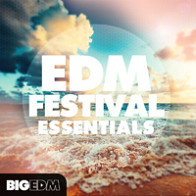 EDM Festival Essentials product image