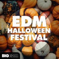 EDM Halloween Festival product image