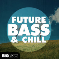 Future Bass & Chill product image