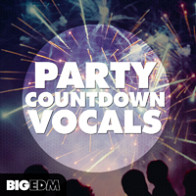 Party Countdown Vocals product image