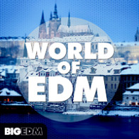 World of EDM product image