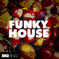 Funky House product image