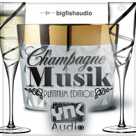 Champagne Musik Platinum Edition product image
